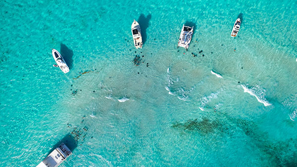 Stingray City Cayman